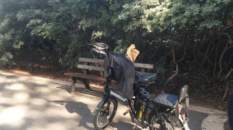 עורב על אופניים